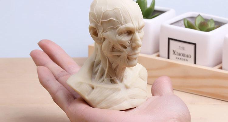 Анатомия мимики — зачем художникам это надо?
