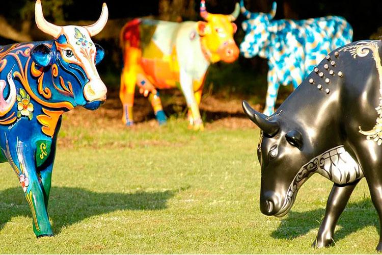 Арт-проект «Парад коров»