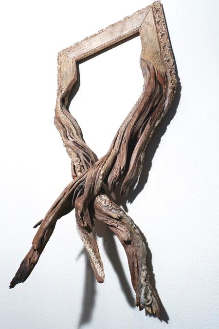 рамка, деревянная рамка, дерево, ветки, ветвистые рамки, художник, скульптура, Дэррил Кокс