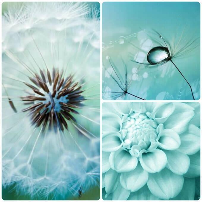 цветоведение,сочетание цветов, гармония цвета, холодные оттенки, холодная гамма, живопись, искусство, дизайн